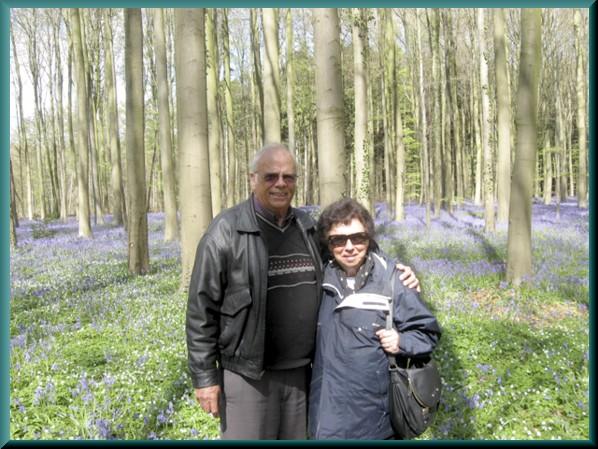 Russ and Mary Ann in forest of bluebells, Belgium